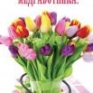 73fdeab916afb7dfb6cc5aa279c53808--stems-tulip.jpg
